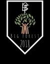 Big Forest (Рубежівка)