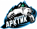 Арктик Телеком