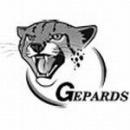 Гепардс