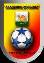 Академия футбола 2008
