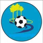Чемпионат Димитровграда по футболу
