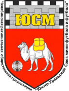 Чемпионат города Челябинска по футболу среди мужских команд
