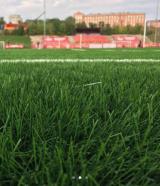 Amateur Stadium