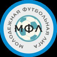 Молодежная футбольная лига (МФЛ)