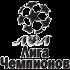 Лига Чемпионов ЛФЛ