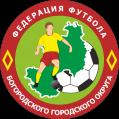 Богородская футбольная лига