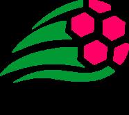 Чемпионат Таганрога по мини-футболу, Высшая лига