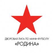 Предновогодний турнир ДЛМФ «Родина»