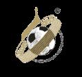 Первенство МФФ Золотое кольцо среди юношей 2007 г.р.
