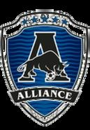 Альянс 2006