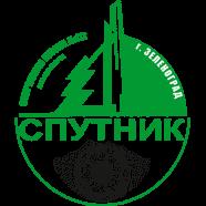 Спутник 2005