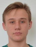 Востриков Илья